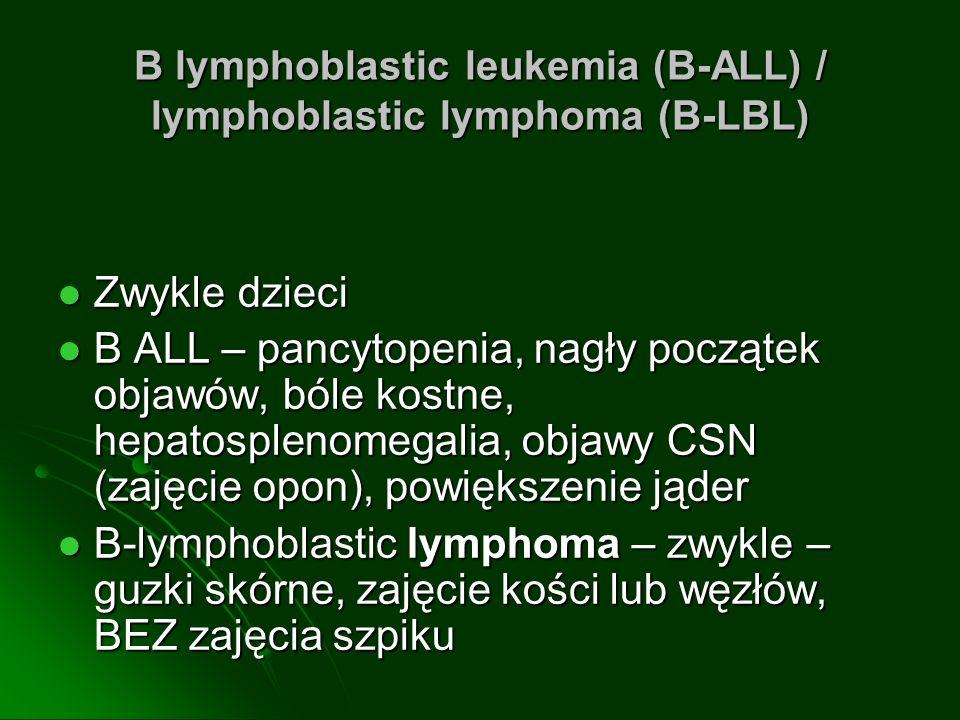B lymphoblastic leukemia (B-ALL) / lymphoblastic lymphoma (B-LBL)