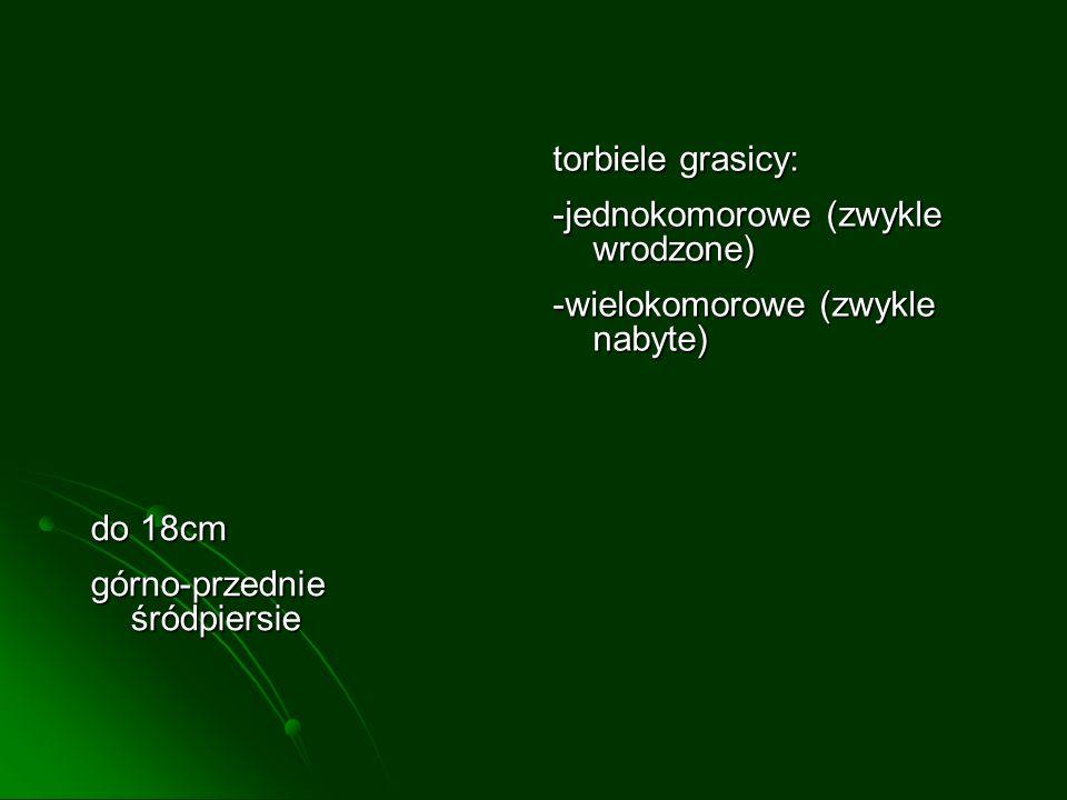 torbiele grasicy:-jednokomorowe (zwykle wrodzone) -wielokomorowe (zwykle nabyte) do 18cm.