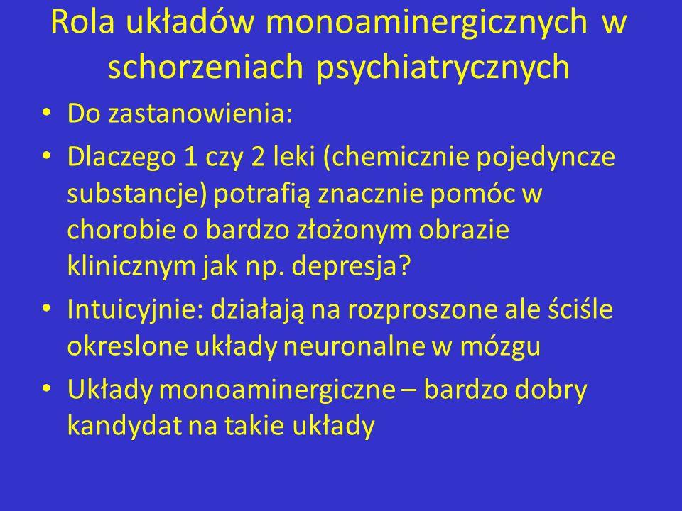 Rola układów monoaminergicznych w schorzeniach psychiatrycznych