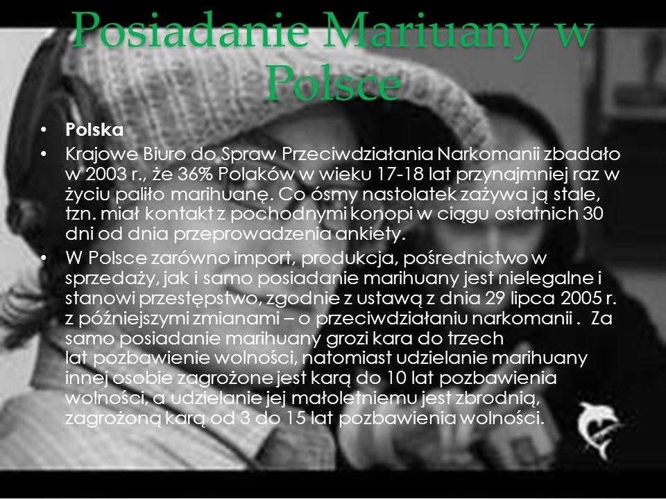 Posiadanie Mariuany w Polsce