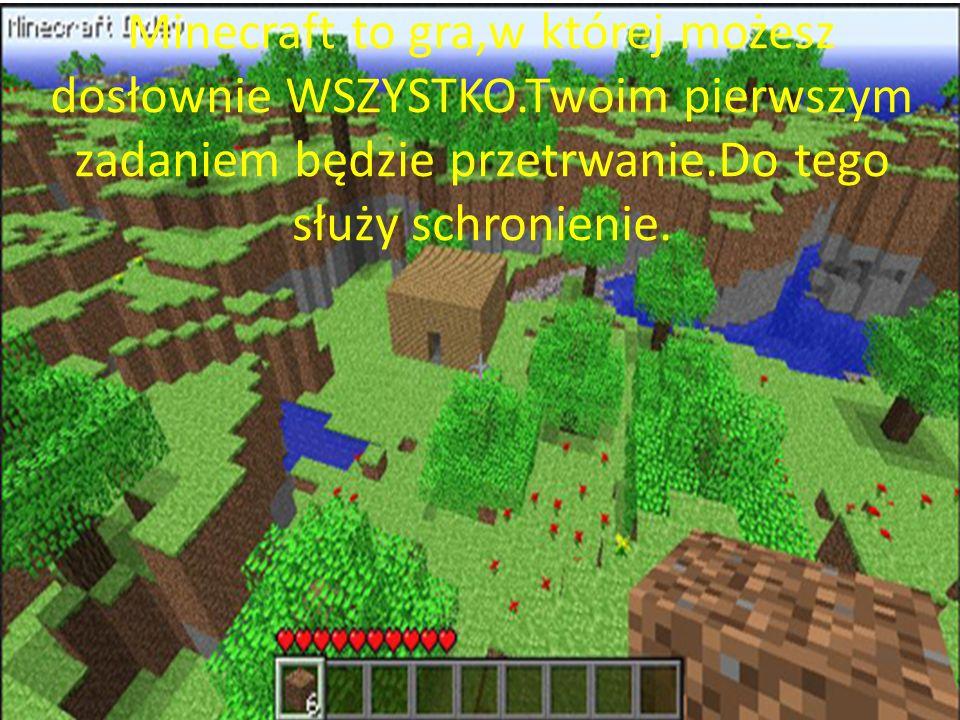 Minecraft to gra,w której możesz dosłownie WSZYSTKO