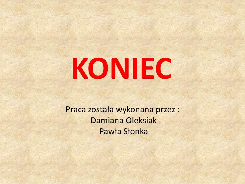 Praca została wykonana przez : Damiana Oleksiak Pawła Słonka