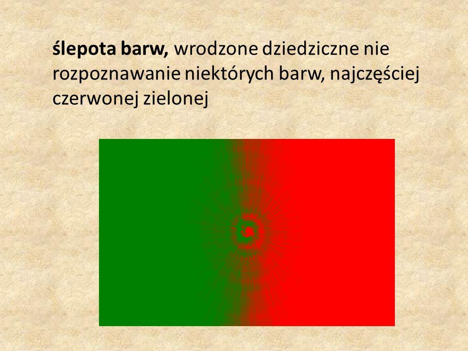 ślepota barw, wrodzone dziedziczne nie rozpoznawanie niektórych barw, najczęściej czerwonej zielonej