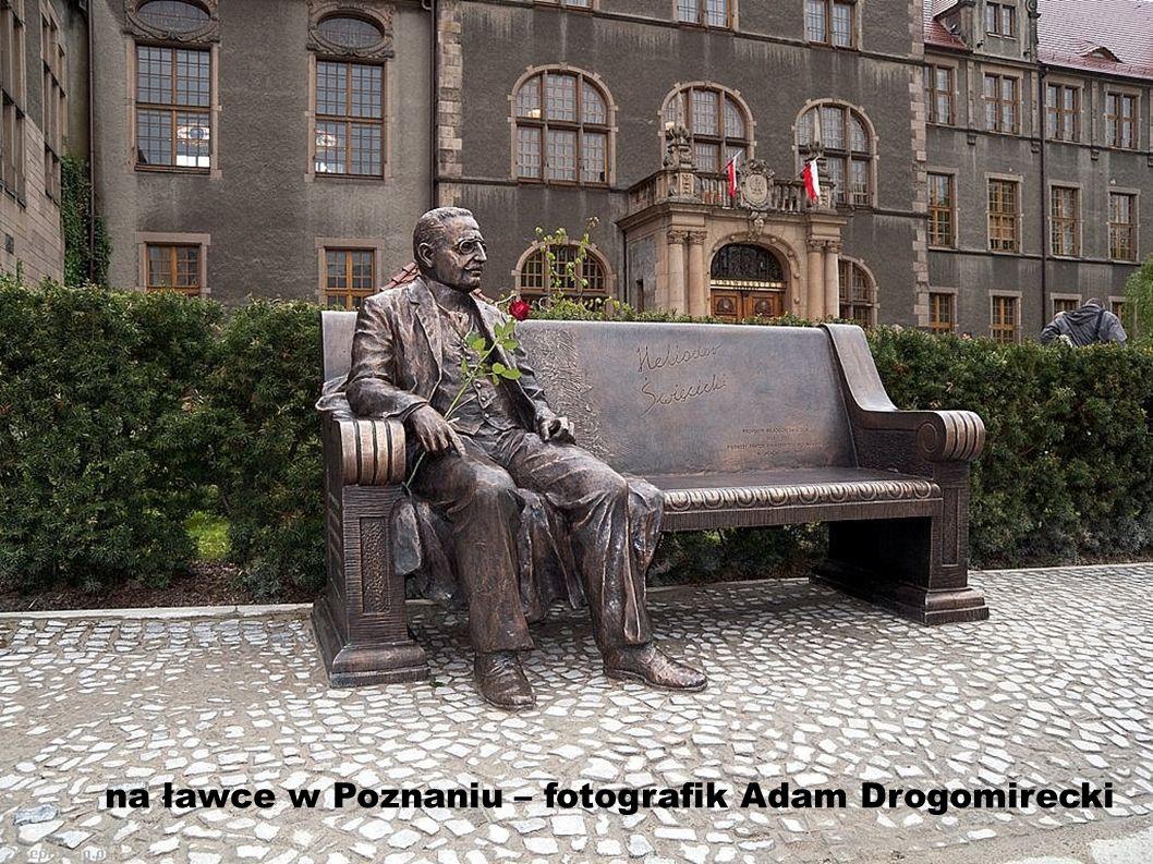 na ławce w Poznaniu – fotografik Adam Drogomirecki