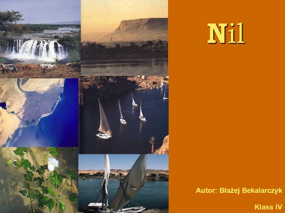 Nil Autor: Błażej Bekalarczyk Klasa IV