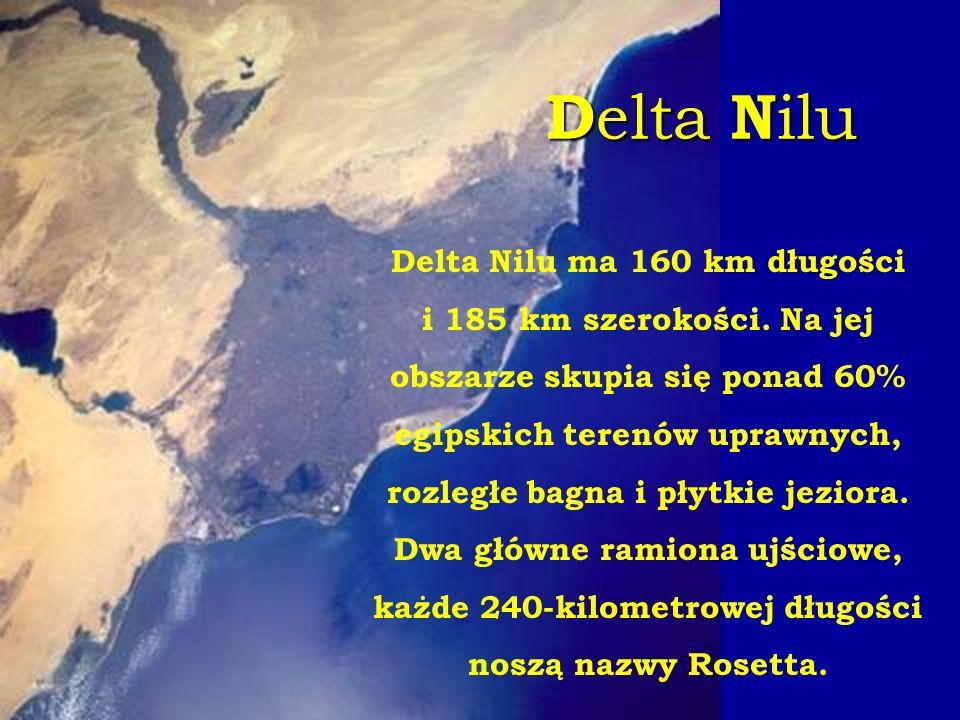 Delta Nilu Delta Nilu ma 160 km długości i 185 km szerokości. Na jej