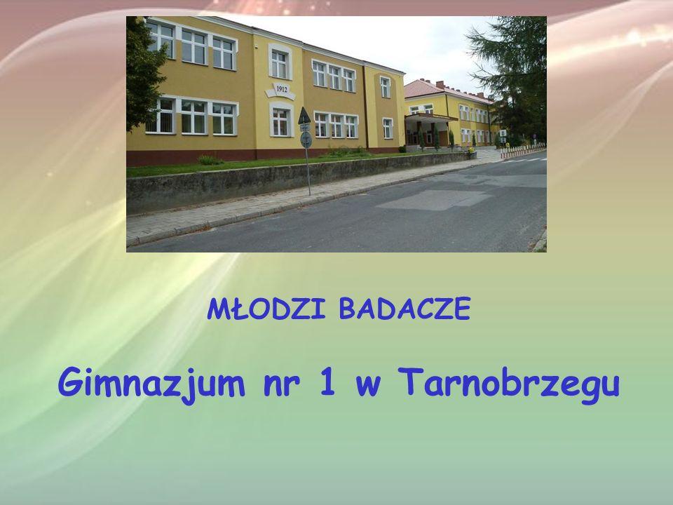 MŁODZI BADACZE Gimnazjum nr 1 w Tarnobrzegu