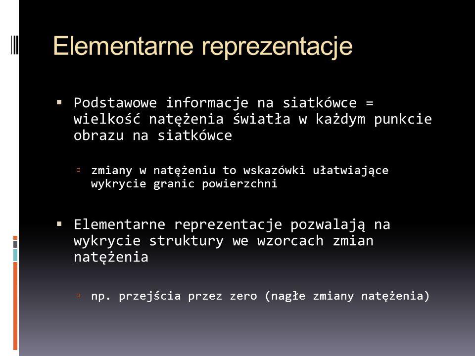 Elementarne reprezentacje