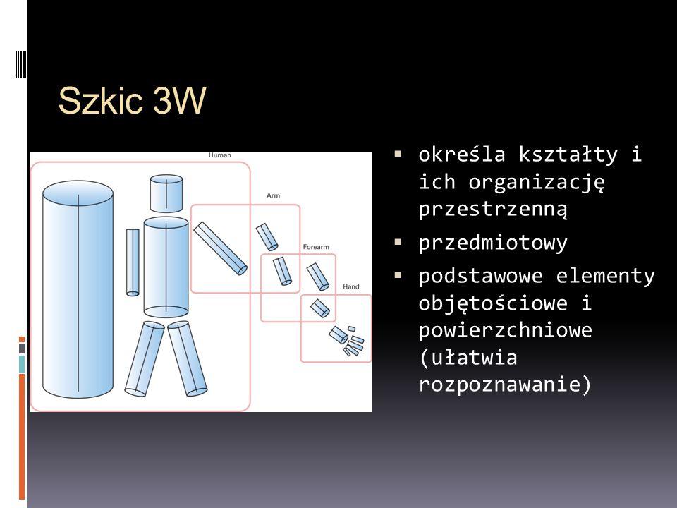 Szkic 3W określa kształty i ich organizację przestrzenną przedmiotowy