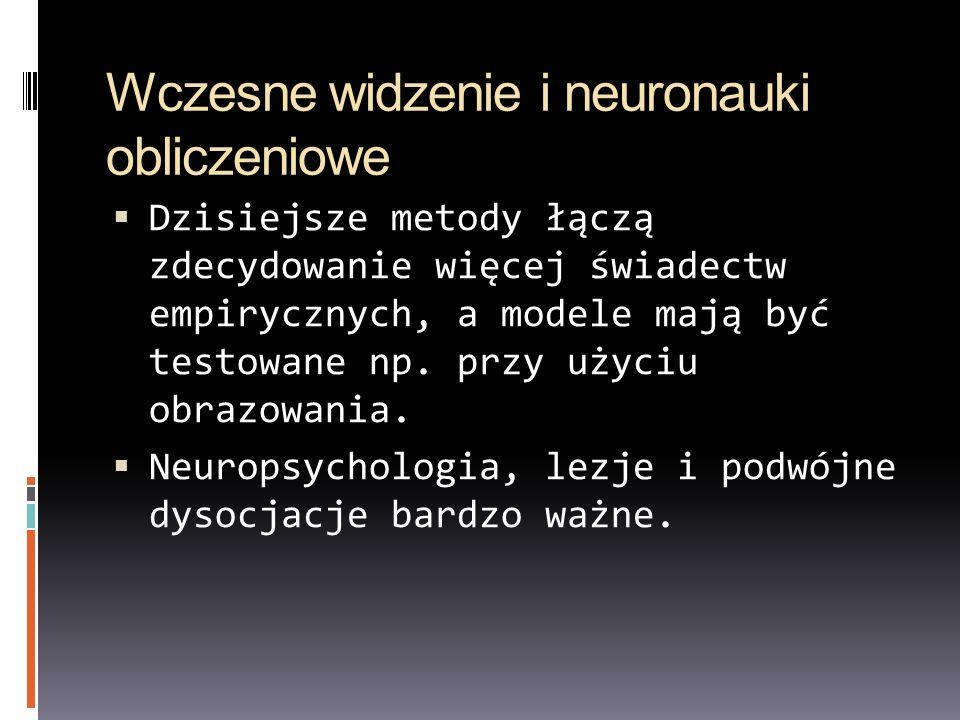 Wczesne widzenie i neuronauki obliczeniowe