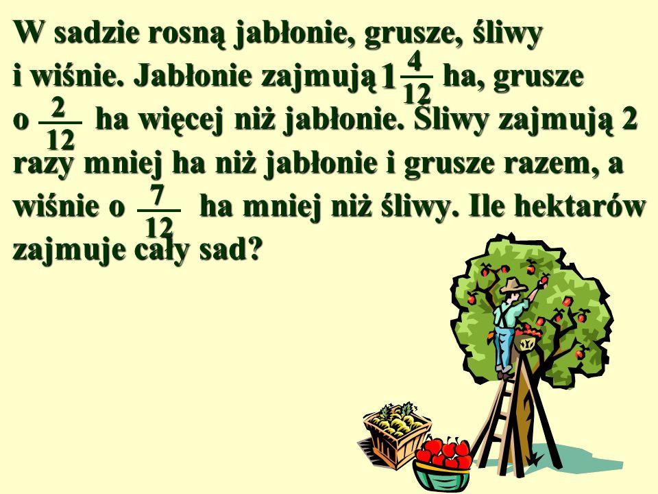 W sadzie rosną jabłonie, grusze, śliwy i wiśnie