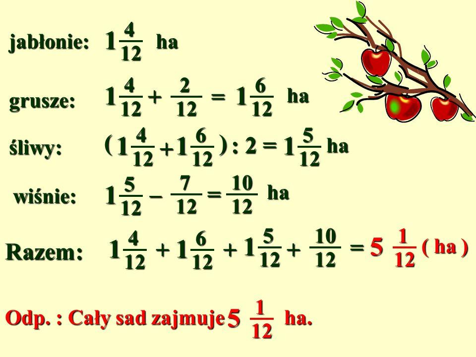 1 1 1 1 1 1 1 5 5 + = ( + ) : 2 = – = + = Razem: jabłonie: 4 12 ha 2