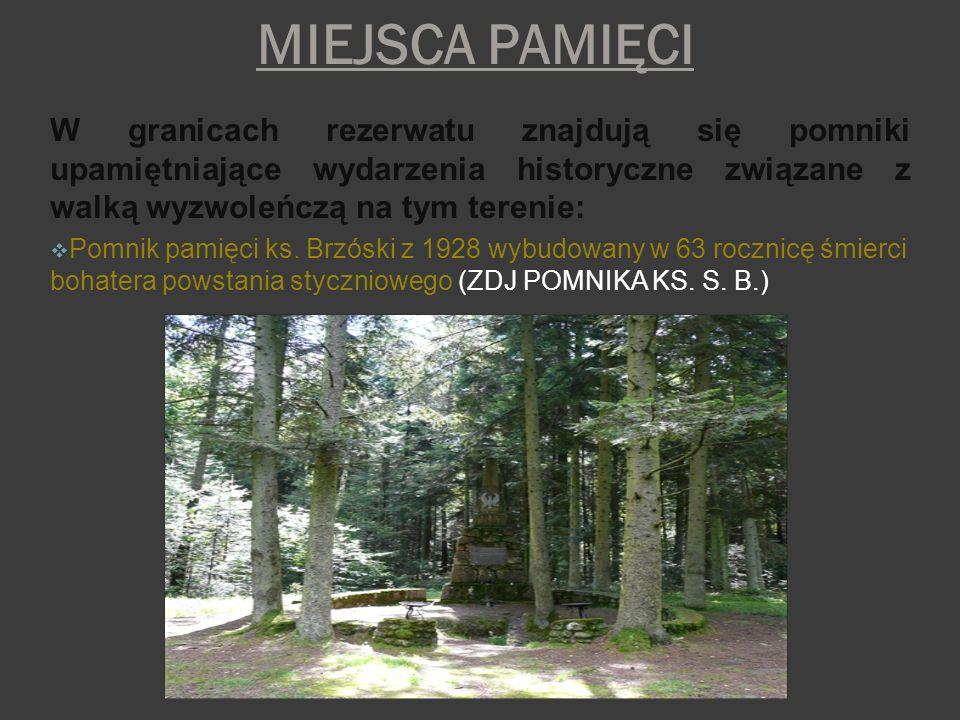 MIEJSCA PAMIĘCIW granicach rezerwatu znajdują się pomniki upamiętniające wydarzenia historyczne związane z walką wyzwoleńczą na tym terenie: