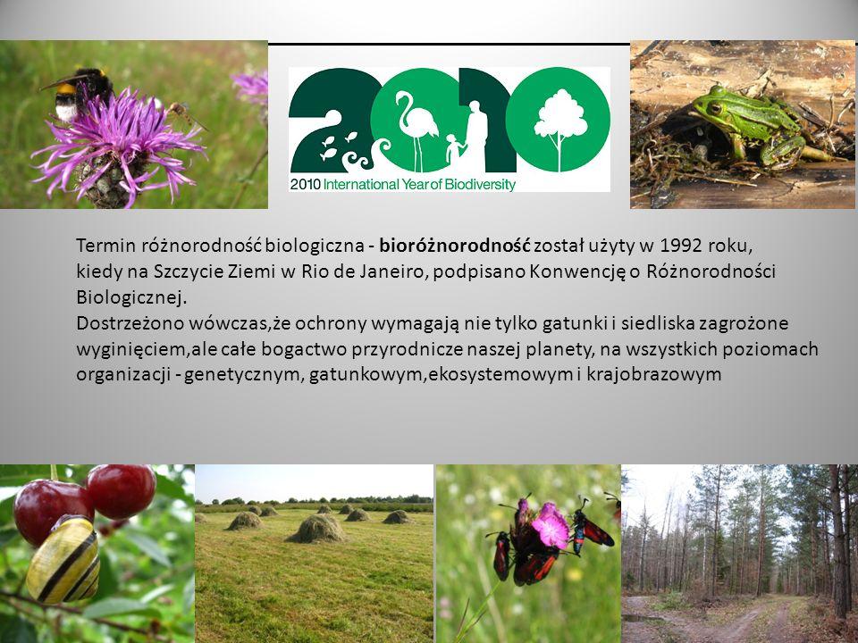 Termin różnorodność biologiczna - bioróżnorodność został użyty w 1992 roku,
