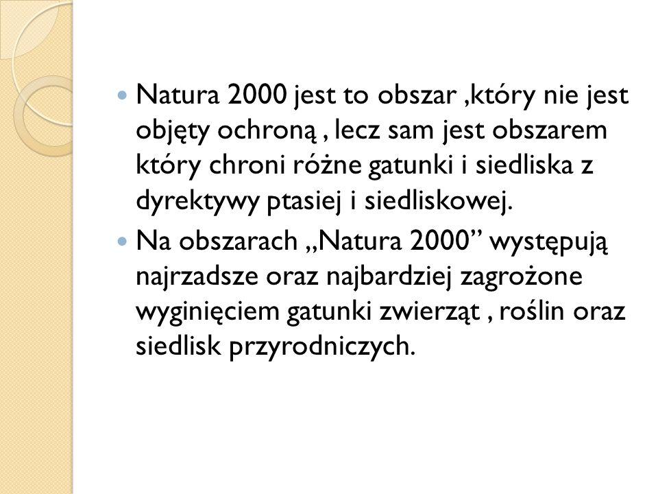 Natura 2000 jest to obszar ,który nie jest objęty ochroną , lecz sam jest obszarem który chroni różne gatunki i siedliska z dyrektywy ptasiej i siedliskowej.