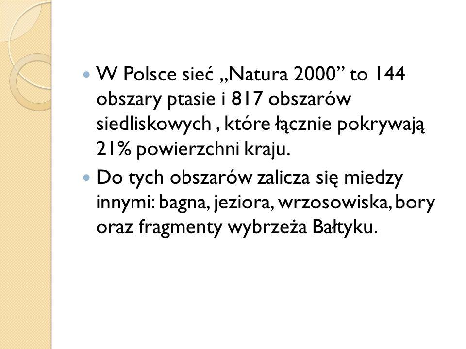 """W Polsce sieć """"Natura 2000 to 144 obszary ptasie i 817 obszarów siedliskowych , które łącznie pokrywają 21% powierzchni kraju."""
