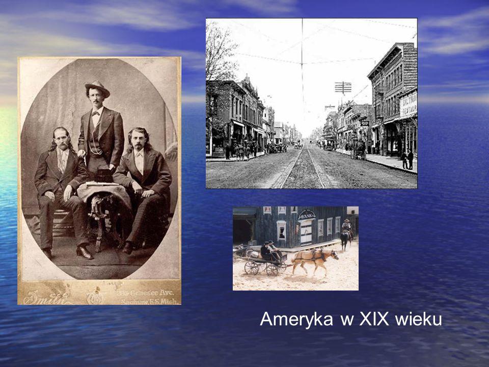 Ameryka w XIX wieku