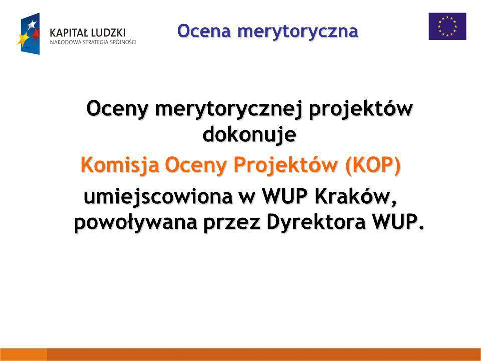 Oceny merytorycznej projektów dokonuje