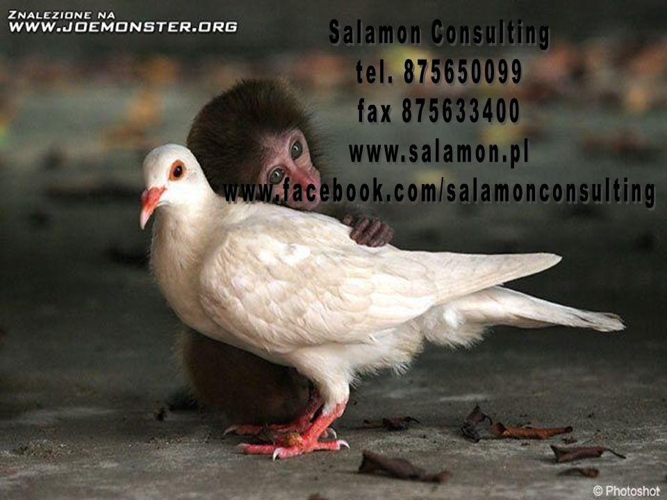 Salamon Consulting tel. 875650099 fax 875633400 www.salamon.pl www.facebook.com/salamonconsulting