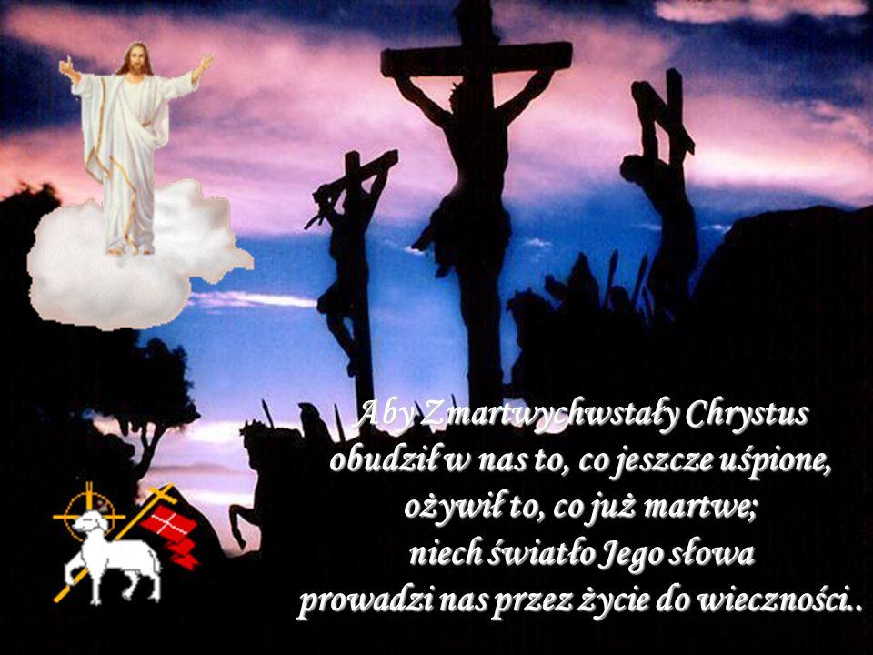 Aby Zmartwychwstały Chrystus obudził w nas to, co jeszcze uśpione, ożywił to, co już martwe; niech światło Jego słowa prowadzi nas przez życie do wieczności..