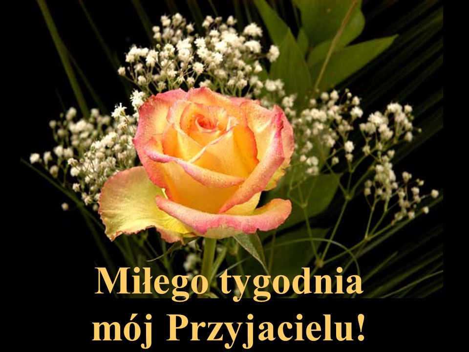 Miłego tygodnia mój Przyjacielu!