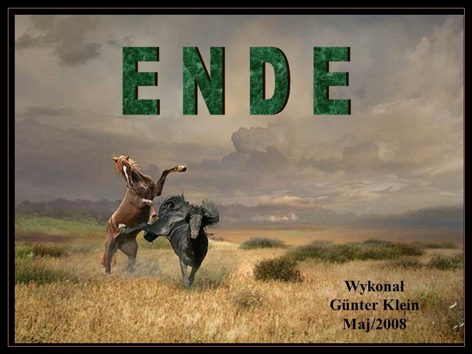 E N D E Wykonał Günter Klein Maj/2008
