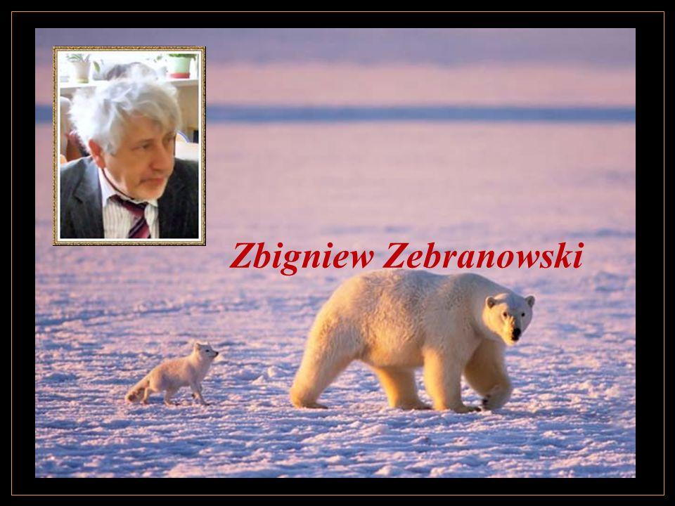 Zbigniew Zebranowski