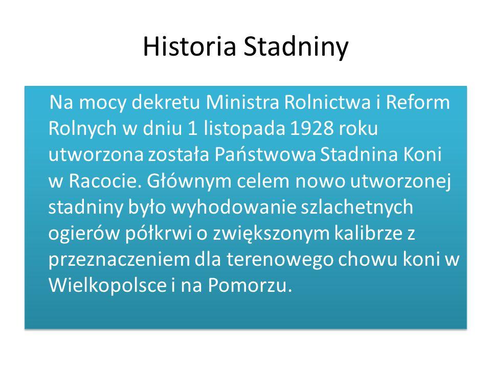 Historia Stadniny