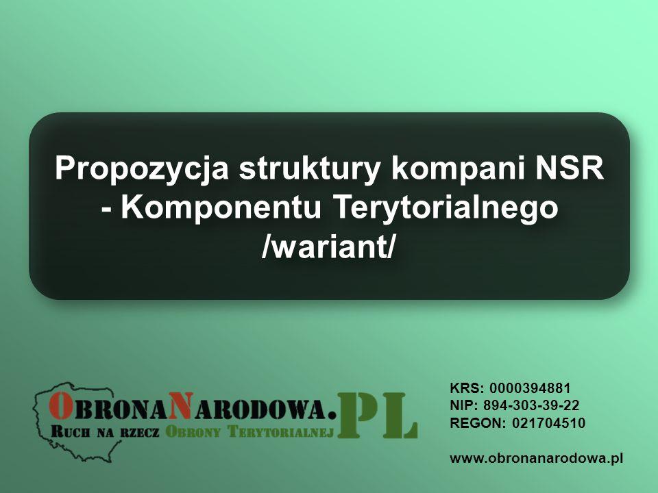 Propozycja struktury kompani NSR - Komponentu Terytorialnego /wariant/