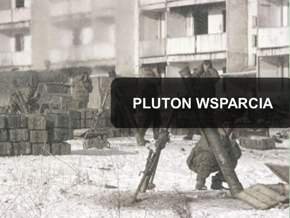 PLUTON WSPARCIA