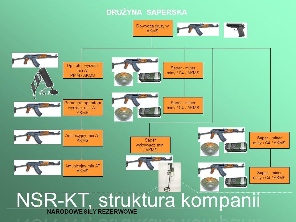 NSR-KT, struktura kompanii