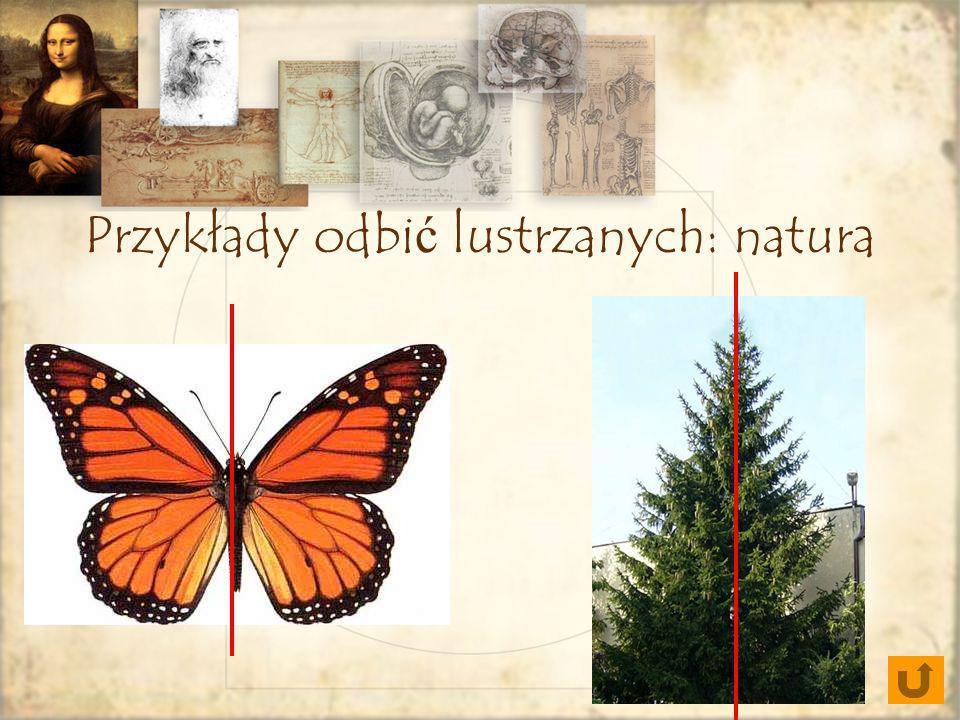 Przykłady odbić lustrzanych: natura