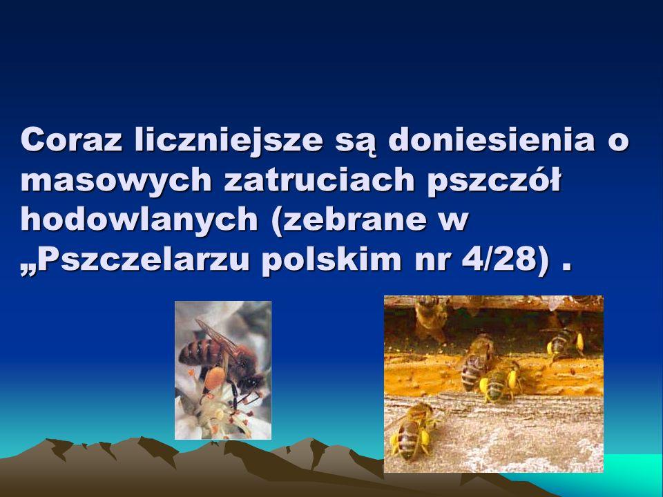 """Coraz liczniejsze są doniesienia o masowych zatruciach pszczół hodowlanych (zebrane w """"Pszczelarzu polskim nr 4/28) ."""