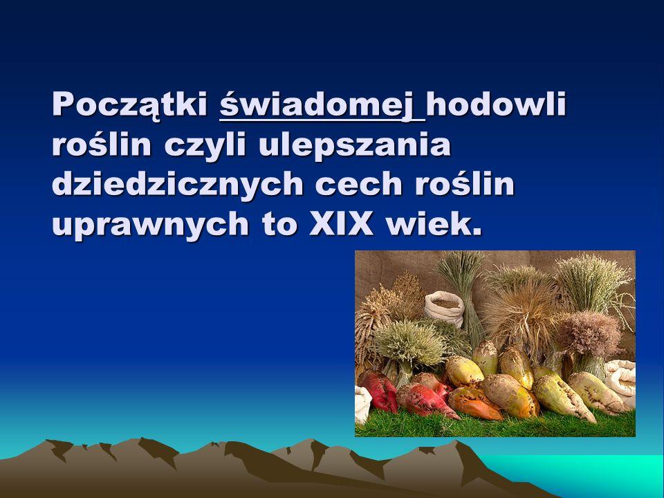 Początki świadomej hodowli roślin czyli ulepszania dziedzicznych cech roślin uprawnych to XIX wiek.