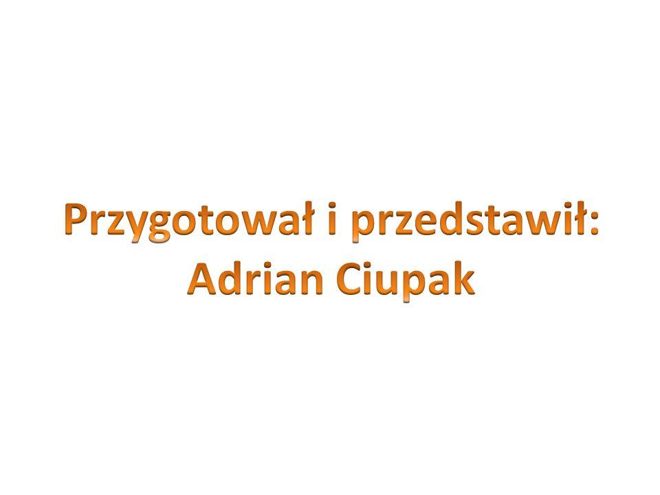 Przygotował i przedstawił: Adrian Ciupak