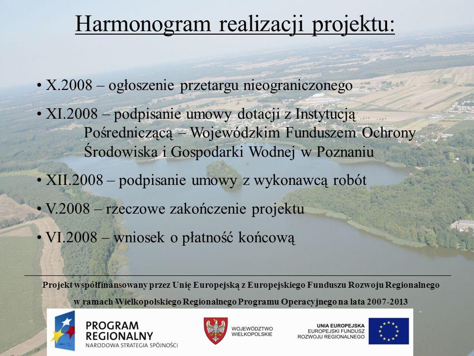 Harmonogram realizacji projektu: