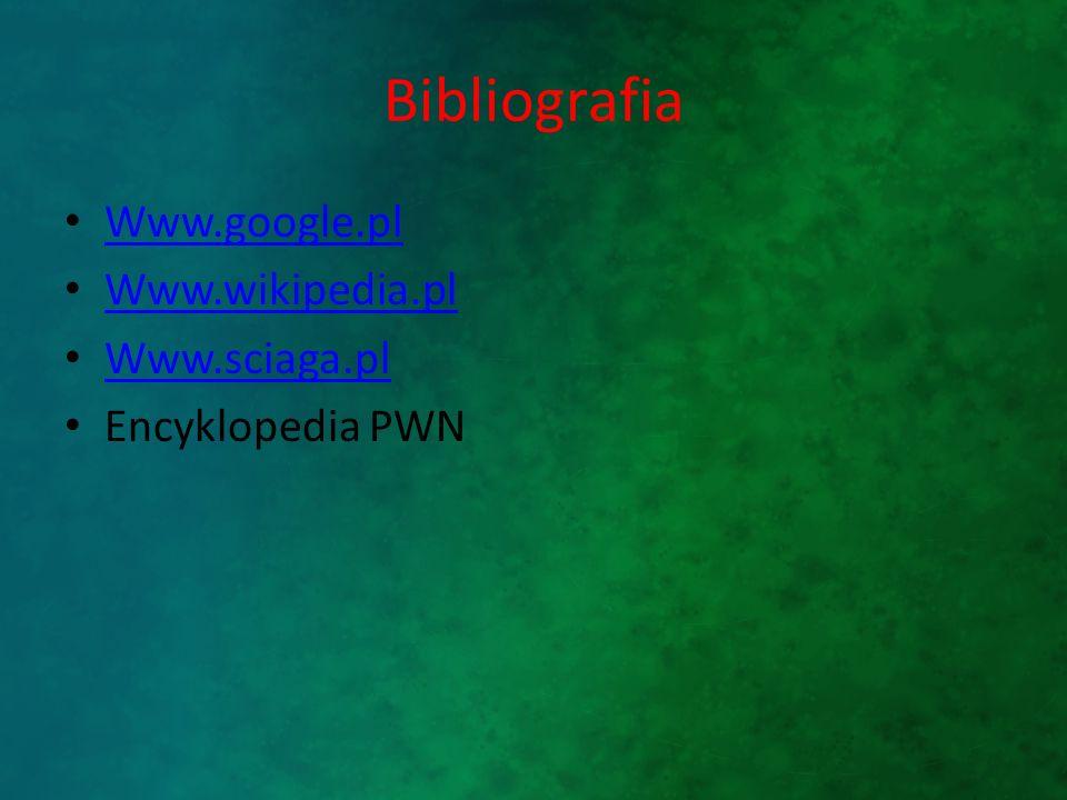 Bibliografia Www.google.pl Www.wikipedia.pl Www.sciaga.pl