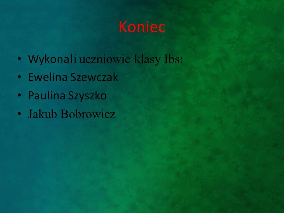 Koniec Wykonali uczniowie klasy Ibs: Ewelina Szewczak Paulina Szyszko
