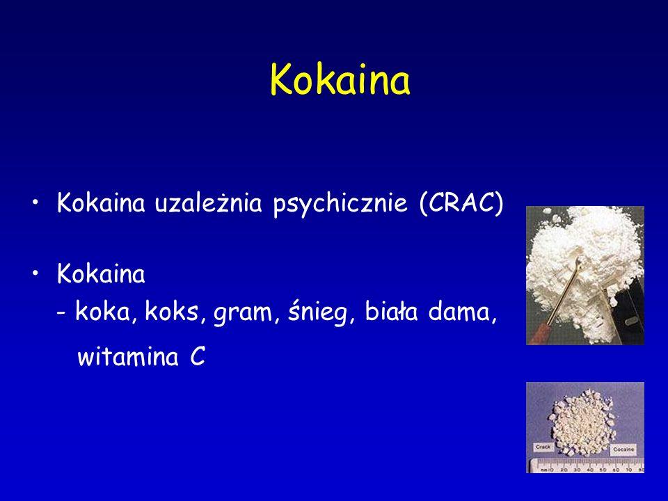 Kokaina Kokaina uzależnia psychicznie (CRAC)