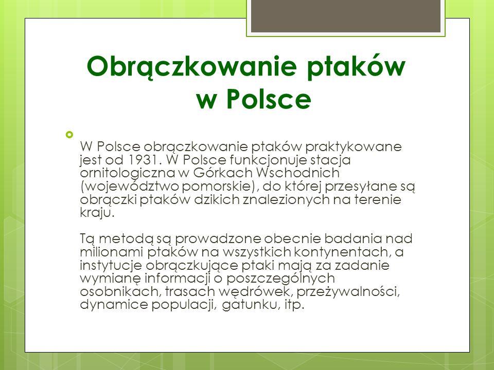 Obrączkowanie ptaków w Polsce