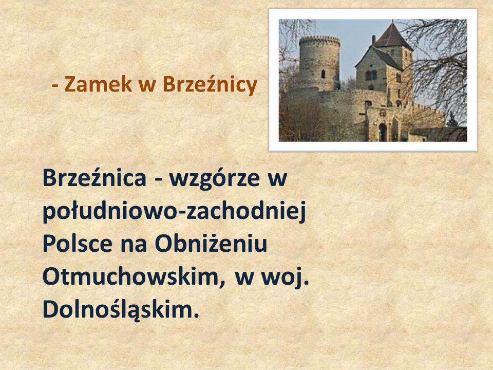 - Zamek w Brzeźnicy Brzeźnica - wzgórze w południowo-zachodniej Polsce na Obniżeniu Otmuchowskim, w woj.