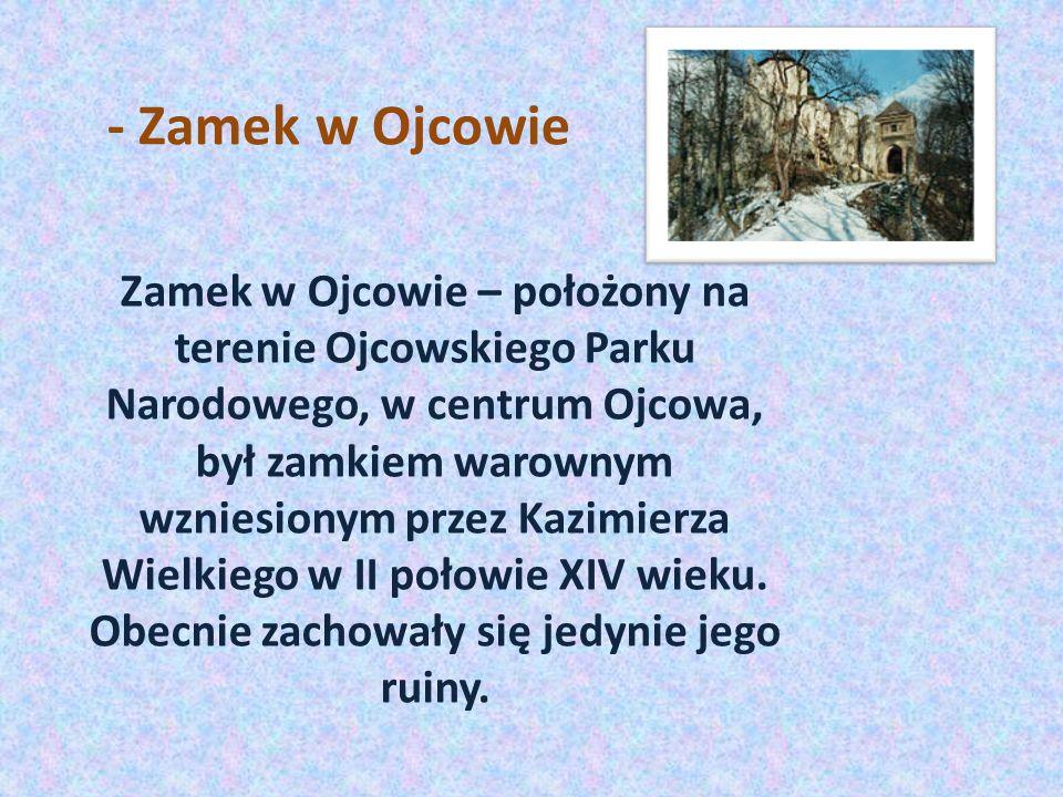 - Zamek w Ojcowie