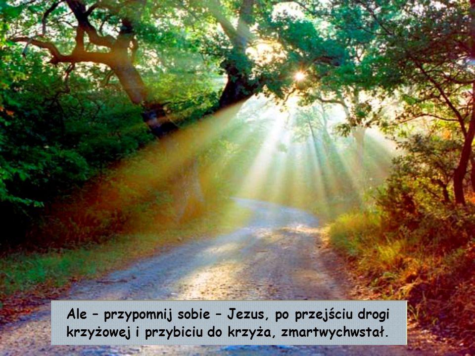 Ale – przypomnij sobie – Jezus, po przejściu drogi krzyżowej i przybiciu do krzyża, zmartwychwstał.