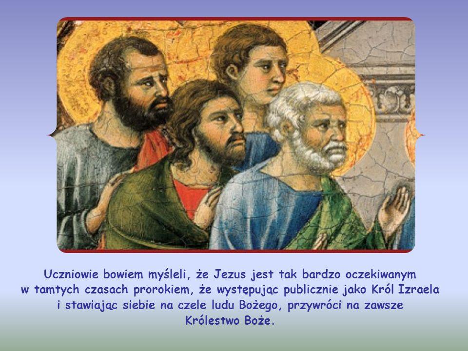 Uczniowie bowiem myśleli, że Jezus jest tak bardzo oczekiwanym w tamtych czasach prorokiem, że występując publicznie jako Król Izraela i stawiając siebie na czele ludu Bożego, przywróci na zawsze Królestwo Boże.