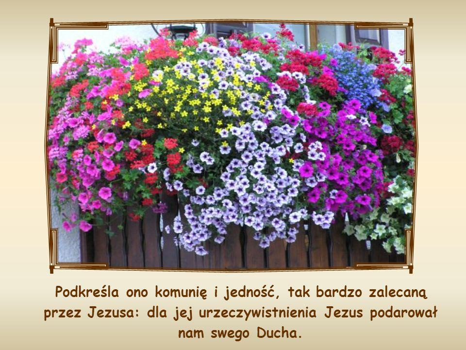Podkreśla ono komunię i jedność, tak bardzo zalecaną przez Jezusa: dla jej urzeczywistnienia Jezus podarował nam swego Ducha.