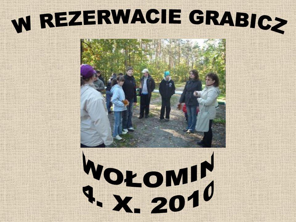 W REZERWACIE GRABICZ WOŁOMIN 4. X. 2010