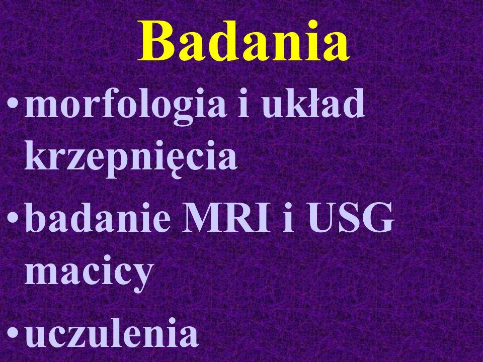 Badania morfologia i układ krzepnięcia badanie MRI i USG macicy