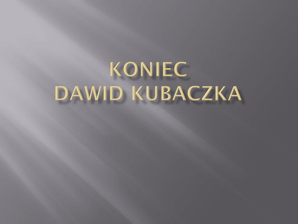 Koniec Dawid Kubaczka