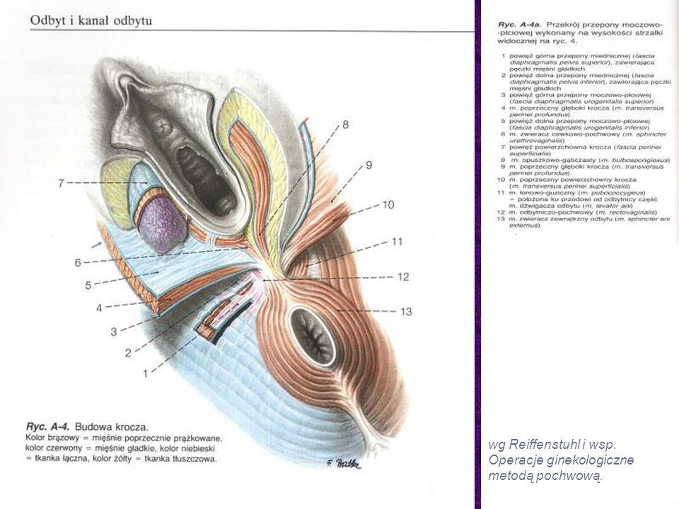 wg Reiffenstuhl i wsp. Operacje ginekologiczne metodą pochwową.