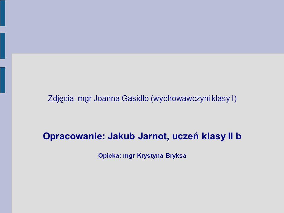 Opracowanie: Jakub Jarnot, uczeń klasy II b